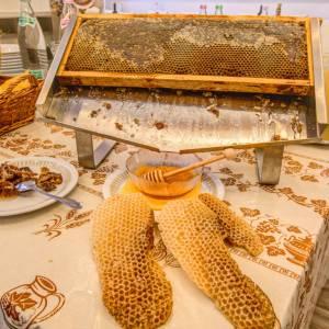 favo di miele